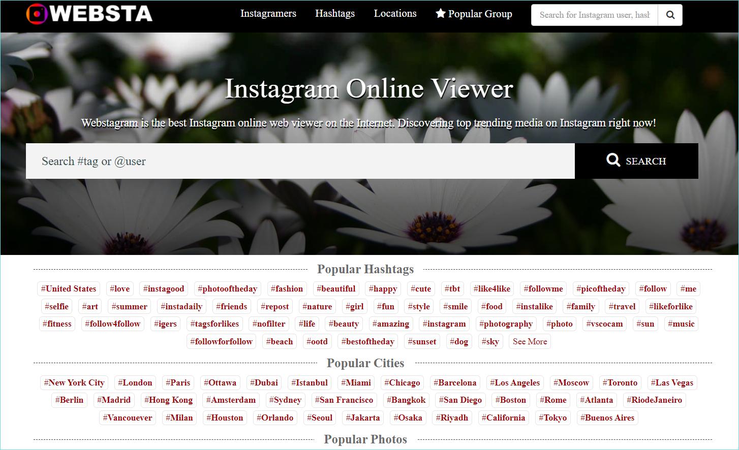 Интерфейс сервиса Webstagram