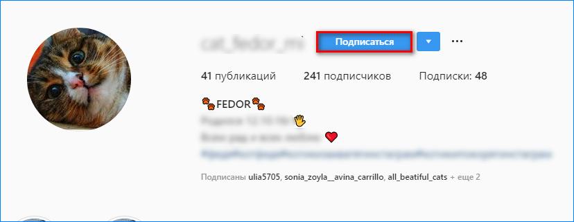 Подписка на пользователя