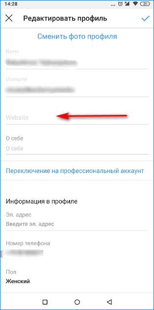 Ввод ссылки в поле Инстаграм