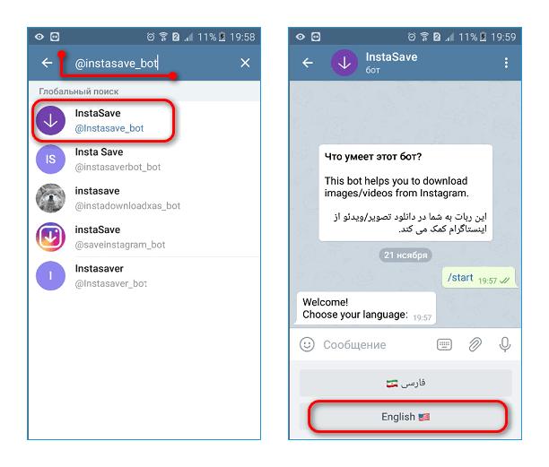 Запуск Телеграм бота