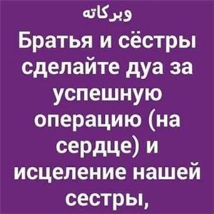 novosti.ingushetii